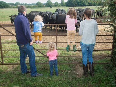 McLaren family looking at Aynho cows in England 2018